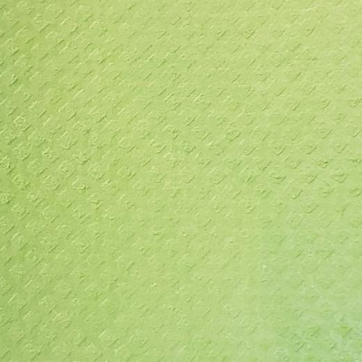 Schwammtuch trocken 171x200mm 1x Stück -apfelgrün-