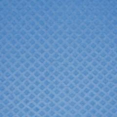 Schwammtuch trocken 171x200mm 1x Stück -Blau-