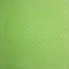 Schwammtuch trocken 171x200mm 1x Stück -Frühlingsgrün-